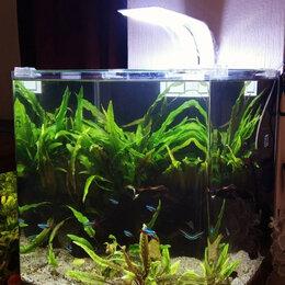 Оборудование для аквариумов и террариумов - Светильник для аквариума, 0