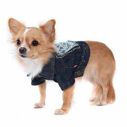 Одежда и обувь - куртка для собаки, 0