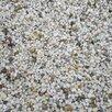Жемчужная галька по цене 7000₽ - Садовые дорожки и покрытия, фото 0