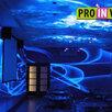 Невидимая флуоресцентная неоновая краска Invisible  по цене 900₽ - Рисование, фото 10