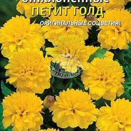 Семена - Бархатцы отклоненные Петит Голд ПЛ, 0