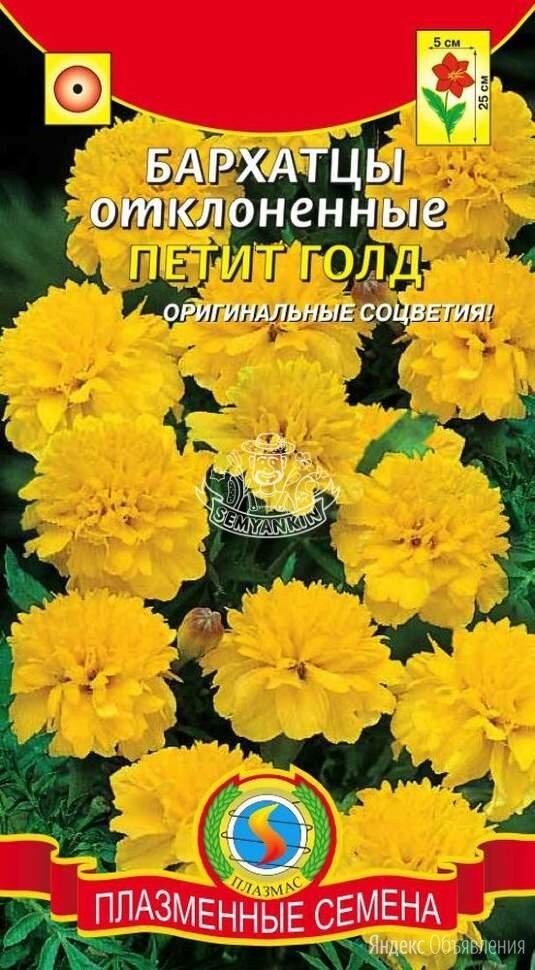 Бархатцы отклоненные Петит Голд ПЛ по цене 21₽ - Семена, фото 0