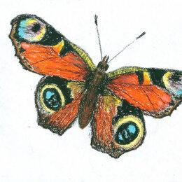 """Картины, постеры, гобелены, панно - Рисунок """"Бабочка"""" картина масляная пастель бумага 28,5х20,5 см Гаврилин Е.Г., 0"""