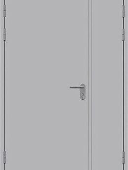 Входные двери - Двупольная глухая противопожарная дверь, 0