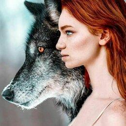 Раскраски и роспись - Картина по номерам - Волк, 0