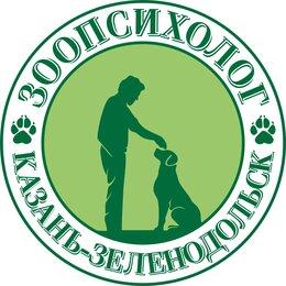 Груминг и уход - Дрессировка собак, Кинолог-Зоопсихолог, 0