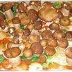 Овощесушилка коврик Самобранка 50x75 овощей инфракрасная электрическая по цене 2200₽ - Сушилки для овощей, фруктов, грибов, фото 2
