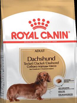Корма  - Сухой корм ROYAL CANIN DACHSHUND ADULT для таксы, 0