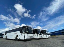 Водитель - Водитель автобуса (кат. D), 0