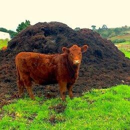 Удобрения - Навоз коровий с доставкой., 0