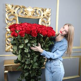 Цветы, букеты, композиции - Высокие розы от 100 до 150 см, 0