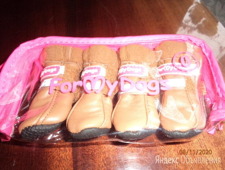 Ботинки  FOR MY DOGS, разм. 0 по цене 600₽ - Одежда и обувь, фото 0