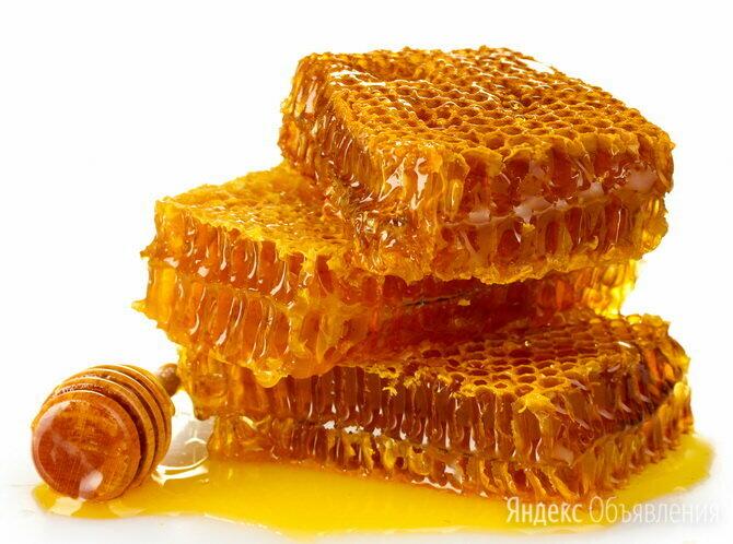 Сотовый мёд для массажа дёсен и ухода за полостью рта. по цене 698₽ - Полоскание и уход за полостью рта, фото 0