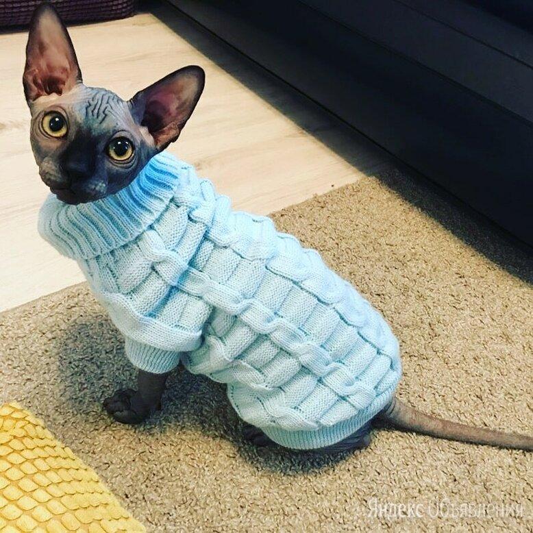 Продам вязаную одежку для животных по цене 500₽ - Одежда и обувь, фото 0