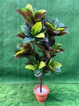 Искусственные растения - Искусственное растение , 0
