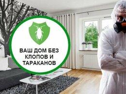 Бытовые услуги - Обработка квартир от клопов, тараканов, муравьев, 0