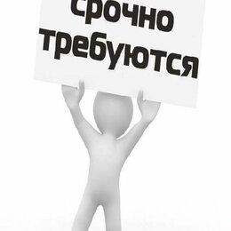 Личные помощники - Административный сотрудник, 0