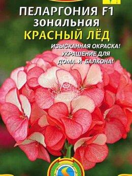 """Рассада, саженцы, кустарники, деревья - Пеларгония F1 зональная """"Красный лед"""" ПЛ, 0"""