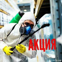 Бытовые услуги - Уничтожение всех видов насекомых клопов,тараканов., 0