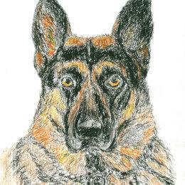 """Картины, постеры, гобелены, панно - Рисунок """"Собака"""" картина масляная пастель бумага 28,5х20,5 см Гаврилин Е.Г. , 0"""