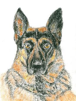"""Картины, постеры, гобелены, панно - Рисунок """"Собака"""" картина масляная пастель бумага…, 0"""