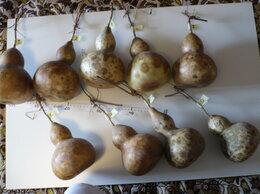 Семена - Лагенария - плоды. Рокамболь чеснок-семена.…, 0