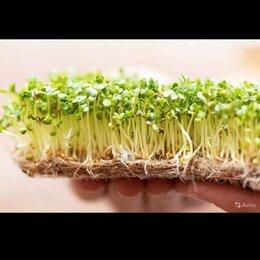 Субстраты, грунты, мульча - Коврик для микрозелени, 0