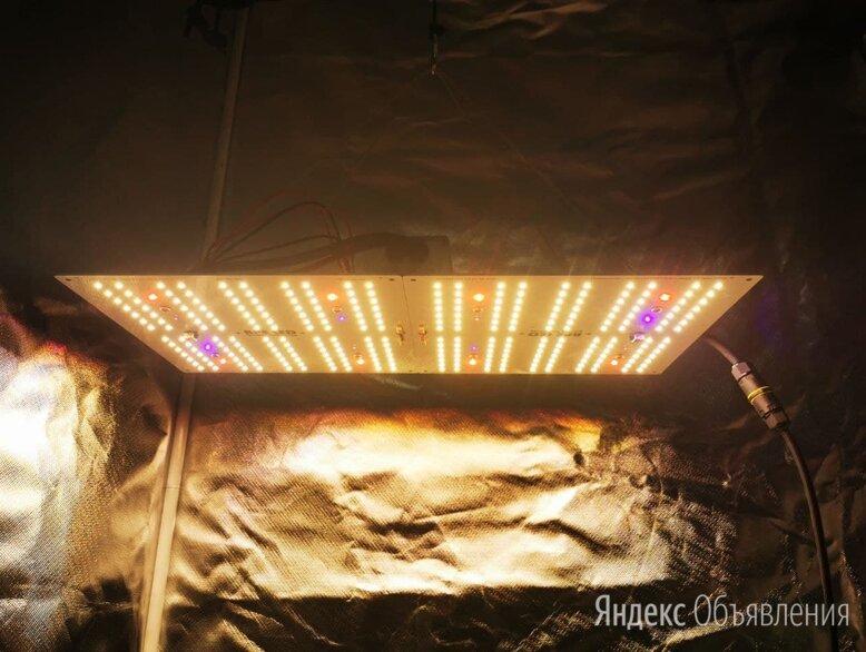 Quantum board 130w 3500k+660nm+730nm+UV по цене 11500₽ - Аксессуары и средства для ухода за растениями, фото 0