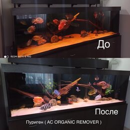 Оборудование для аквариумов и террариумов - Пуриген ( AC ORGANIC REMOVER ) - 500 ml, 0