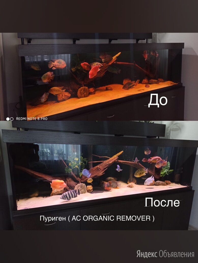 Пуриген ( AC ORGANIC REMOVER ) - 500 ml по цене 950₽ - Оборудование для аквариумов и террариумов, фото 0