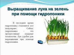 Аксессуары и средства для ухода за растениями - Луковое Счастье электрический выращиватель пера…, 0
