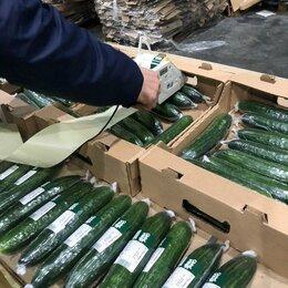 Упаковщики - Разнорабочий на производство огурцов (вахта, Московская область), 0