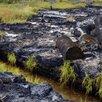Сорбент нефти (нефтедеструктор) под ваши цели по цене не указана - Моющие средства, фото 5
