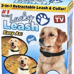 Транспортировка, переноски - Ремешок для собак  Lucky Leash, 0