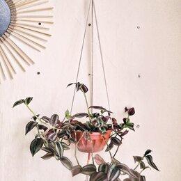 Горшки, подставки для цветов - Подвес для цветка: ничего лишнего, 0