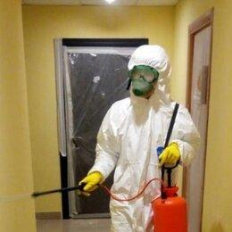 Бытовые услуги - Уничтожение клопов,тараканов,крыс,мышей,блох,ос, клещей,комаров, шершней, 0