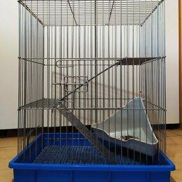 Клетки и домики  - Клетка для мелких грызунов 32х50х63, 0