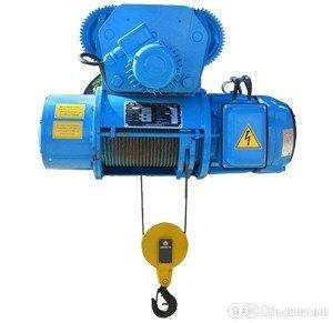Таль электрическая г/п 5,0 т Н - 30 м, тип 13Т10666 по цене 434359₽ - Грузоподъемное оборудование, фото 0