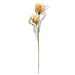 """Искусственные растения - Цветок из фоамирана 105 см желтый """"Нидуляриум…, 0"""