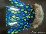 Зимний комплект по цене 1500₽ - Комплекты верхней одежды, фото 0