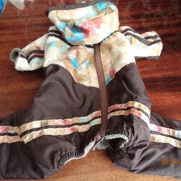 Одежда и обувь - Комбинезон для собаки, 24 см, 0