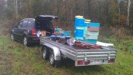 Сельскохозяйственные животные - Карника пчелы 2022, 0