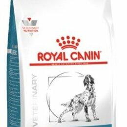 Корма  - ROYAL CANIN Сухой корм для взрослых собак Anallergenic AN 18, 0