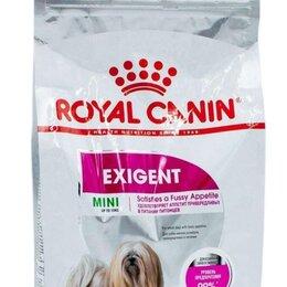 Корма  - Exigent mini 12 кг royal canin, 0