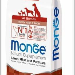 Корма  - Сухой корм Monge Dog Speciality Puppy&Junior для щенков с ягненком и рисом, 0