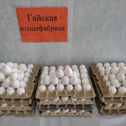 Продукты - Яйцо куриное, 0