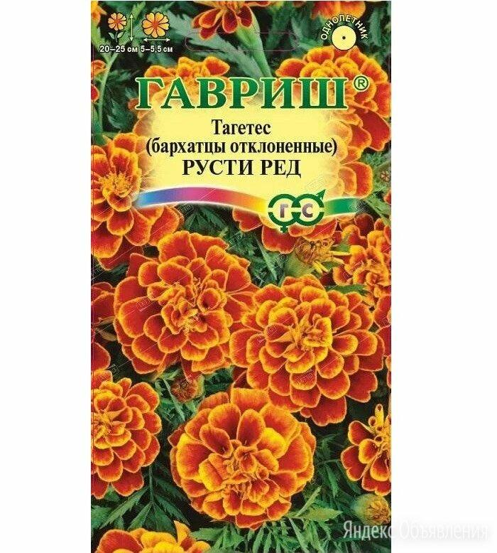 Бархатцы Русти Ред отклон. 0,3гр Гавриш по цене 23₽ - Семена, фото 0
