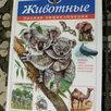 Детская литература по цене 350₽ - Детская литература, фото 2