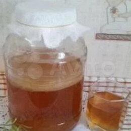 Ингредиенты для приготовления напитков - Продаю чайный гриб, 0