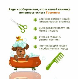 Груминг и уход - Груминг собак и кошек., 0
